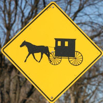 Episode 171 - Amish Romance (w/ Gwendolyn Kiste)